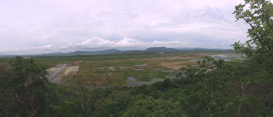 La lagune du parc de Palo Verde - Costa Rica