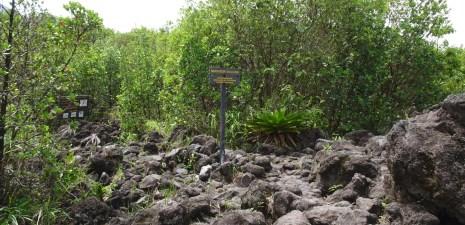 Le mirador du volcan Arenal - Costa Rica