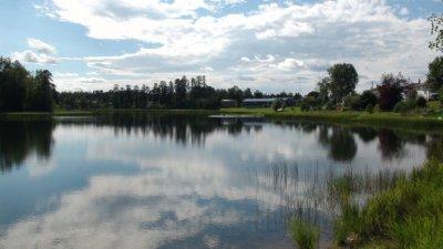 Au bord d'un lac entre Kenora et Ignace - Ontario (Canada)