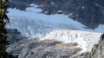 Le glacier Angel - La route des Glaciers - Rocheuses canadiennes