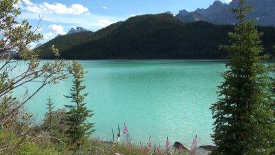 Lac Waterfawl - La route des Glaciers - Rocheuses canadiennes