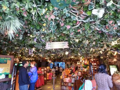 Le Rainforest Café - San Francisco - Californie (USA)