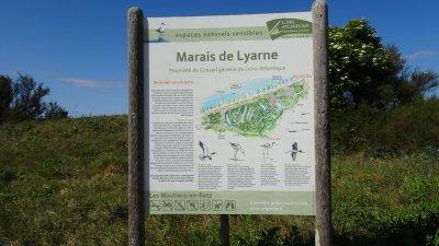 Le marais de Lyarne - Les Moutiers-en-Retz