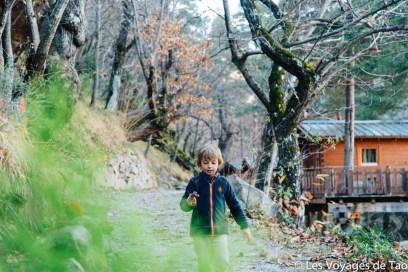 Cabanes dans les arbres Tende-35