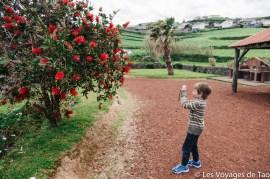 Les voyages de Tao Sao Miguel Açores-13