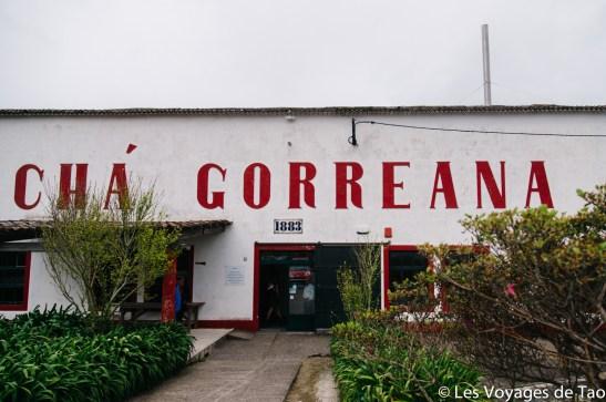 Les voyages de Tao Sao Miguel Açores-17