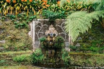 Les voyages de Tao Sao Miguel Açores-49