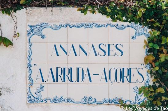 Les voyages de Tao Sao Miguel Açores-56