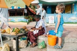 Les voyages de Tao voyage en Inde en famille-185