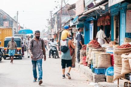 Les voyages de Tao voyage en Inde en famille-213