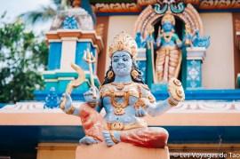 Les voyages de Tao voyage en Inde en famille-216