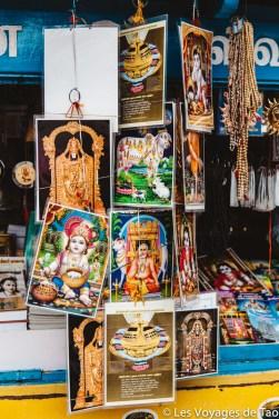 Les voyages de Tao voyage en Inde en famille-239