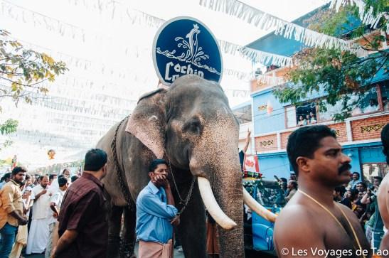 Les voyages de Tao voyage en Inde en famille-31