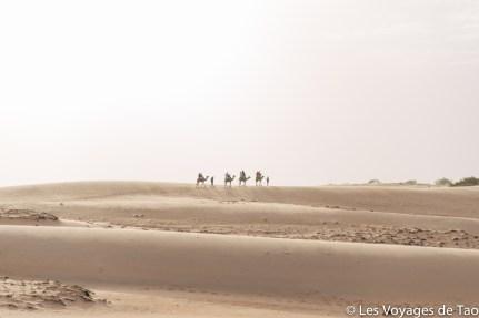 Les voyages de tao Désert de Lompoul-16