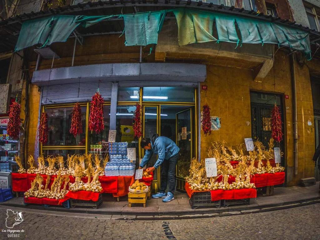 Carnet de voyage d'une balade urbaine à Istanbul dans mon article Carnet de voyage à Istanbul : Ville de contrastes et de découvertes #istanbul #turquie #voyage