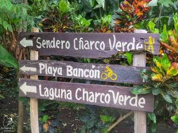 Dans le parc de Charco Verde à Ometepe dans mon article Mon voyage au Nicaragua en 10 coups de cœur et incontournables à visiter #nicaragua #voyage #ameriquecentrale #ometepe