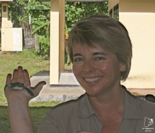 Bébé tortue au parc Meru Betiri lors d'un voyage à Java hors des sentiers battus dans notre article Autre regard sur l'île de Java en Indonésie : Un voyage à Java autrement #java #indonesie #voyage #horsdessentiersbattus #javaautrement