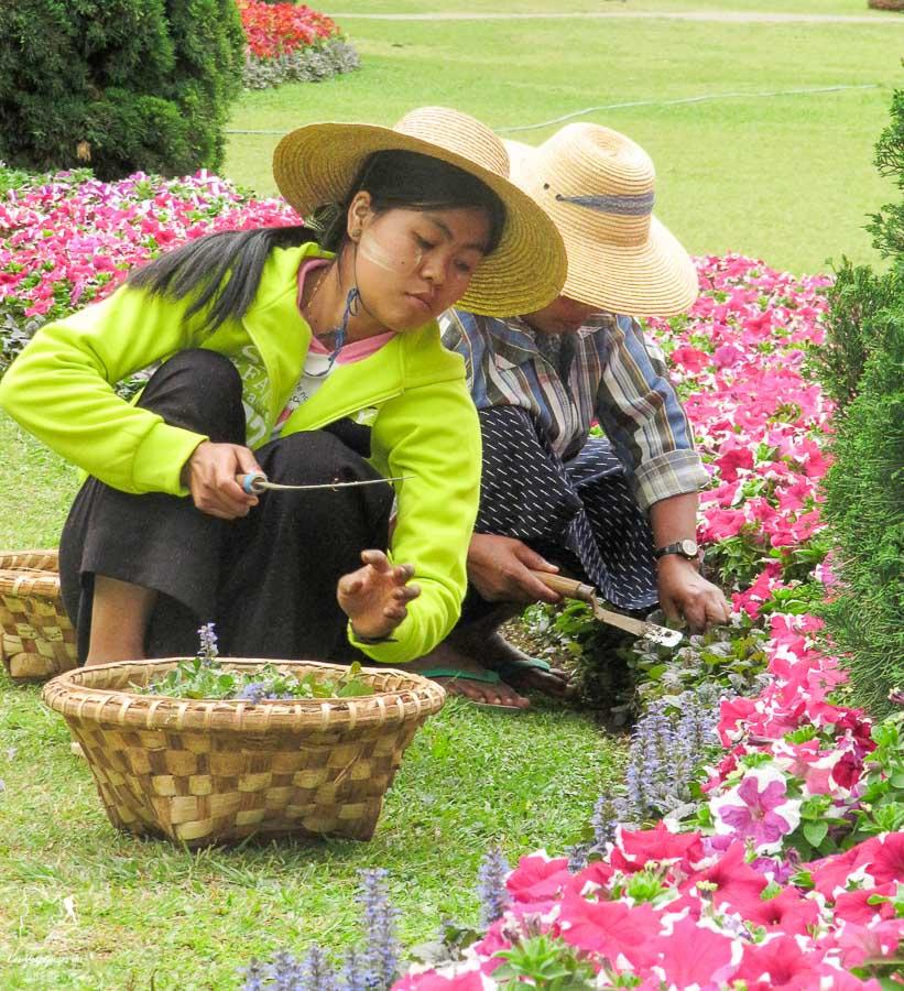 Jardin de Pyin u Lwindans notre article Voyage au Myanmar : Mes expériences et lieux à visiter au Myanmar #myanmar #birmanie #asie #voyage #itineraire #PyinuLwin