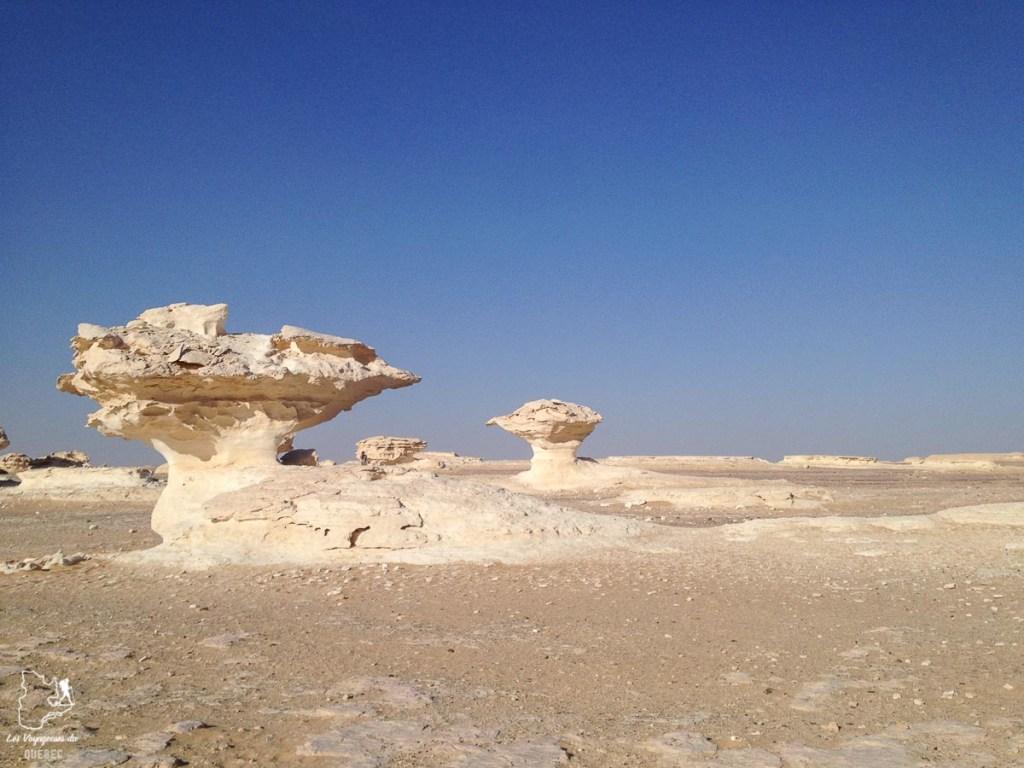 Le désert blanc en Égypte dans notre article Le Nil en Égypte : L'itinéraire de mon voyage sur le Nil en train #egypte #nil #afrique #train #voyage #desert