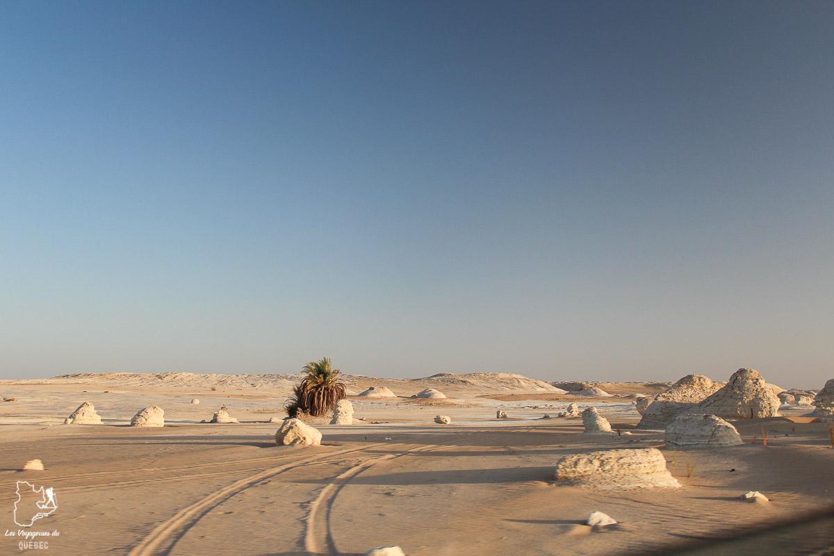 Voyage dans le désert en Égypte dans notre article Le Nil en Égypte : L'itinéraire de mon voyage sur le Nil en train #egypte #nil #afrique #train #voyage #desert