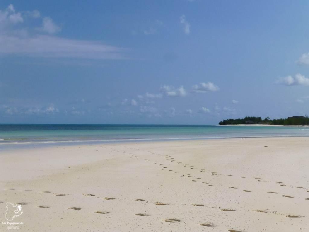 Plongée sous-marine à Zanzibar en Tanzanie dans notre article Plongée sous-marine : 20 destinations de plongée à travers le monde #plongee #plongeesousmarine #voyage #destination