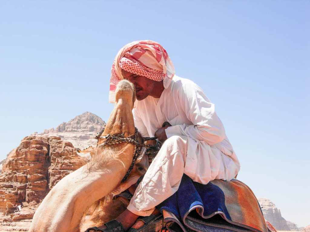 Chamelier en randonnée en chameaux dans désert du Wadi Rum dans notre article Déserts du monde : L'expérience mystique du Sahara, Thar et Wadi Rum #deserts #desert #sahara #thar #wadirum #voyage