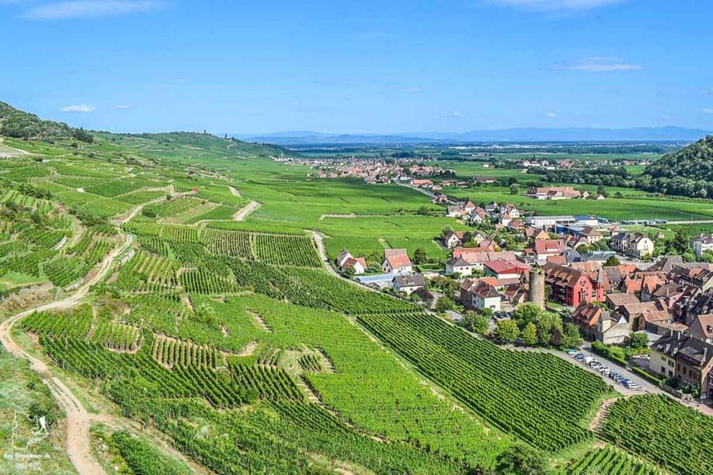 Randonnée Riewerle à faire près de Strasbourg en Alsace dans notre article Visiter Strasbourg en Alsace et ses environs en 6 itinéraires d'un jour #strasbourg #alsace #france #voyage