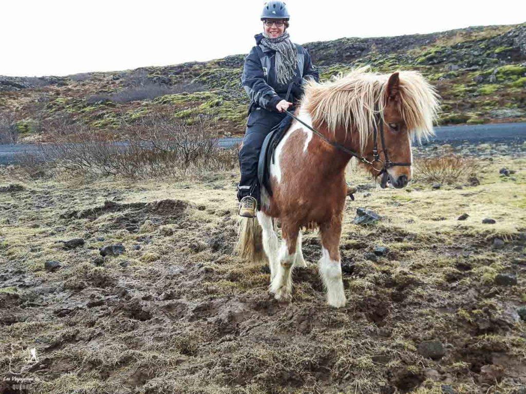 Randonnée à cheval en Islande dans notre article Une semaine en Islande : Mon expérience à visiter l'Islande en solo #islande #unesemaine #voyage #europe #voyageensolo