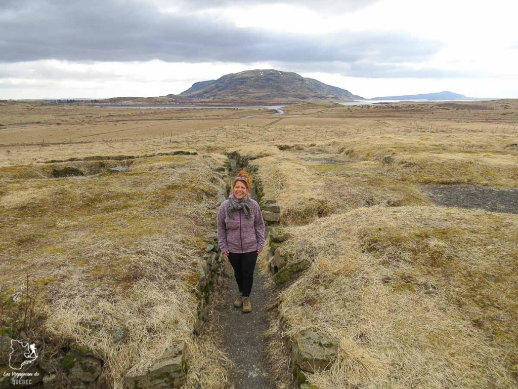 Budget voyage en Islande dans notre article Une semaine en Islande : Mon expérience à visiter l'Islande en solo #islande #unesemaine #voyage #europe #voyageensolo