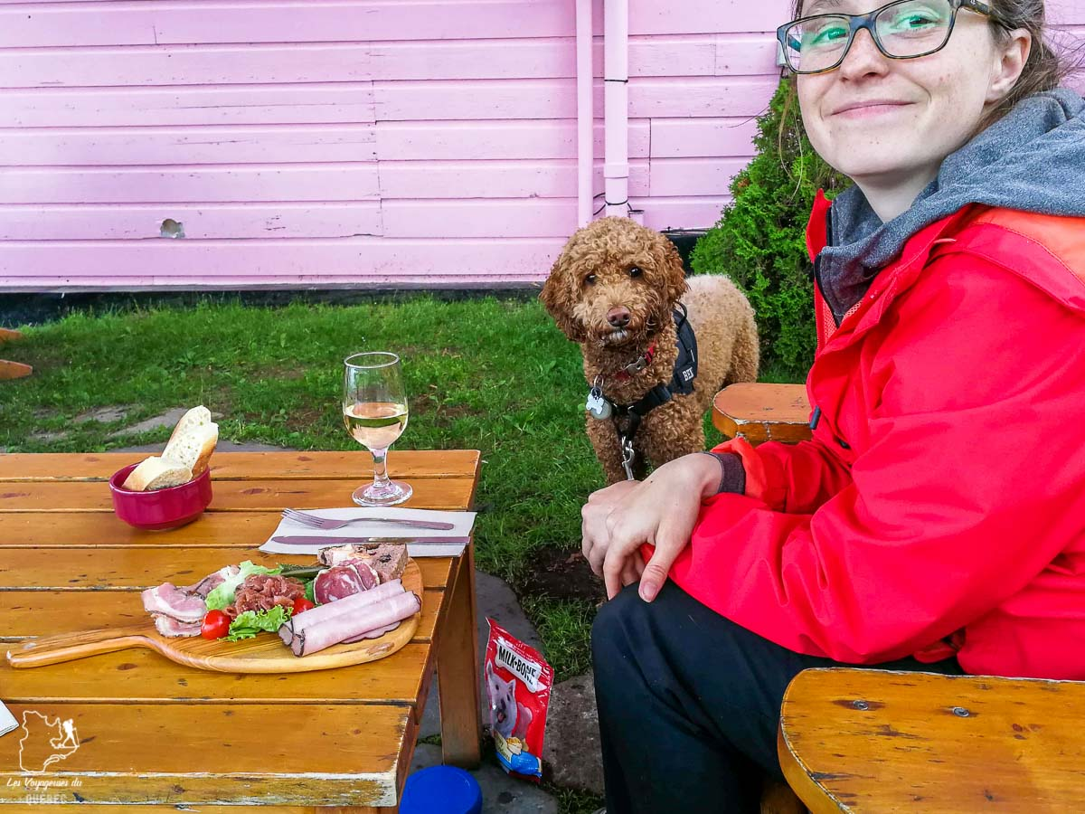 Terrasse où manger avec mon chien à Tadoussac dans notre article Voyager avec son chien au Québec : Que faire et où aller #quebec #chien #voyager