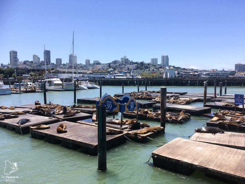 Pier 39 dans la Baie de San Francisco dans notre article Villes de la Californie : une semaine à San Francisco, Los Angeles et San Diego #californie #usa #etatsunis #voyage #losangeles #sanfrancisco #sandiego