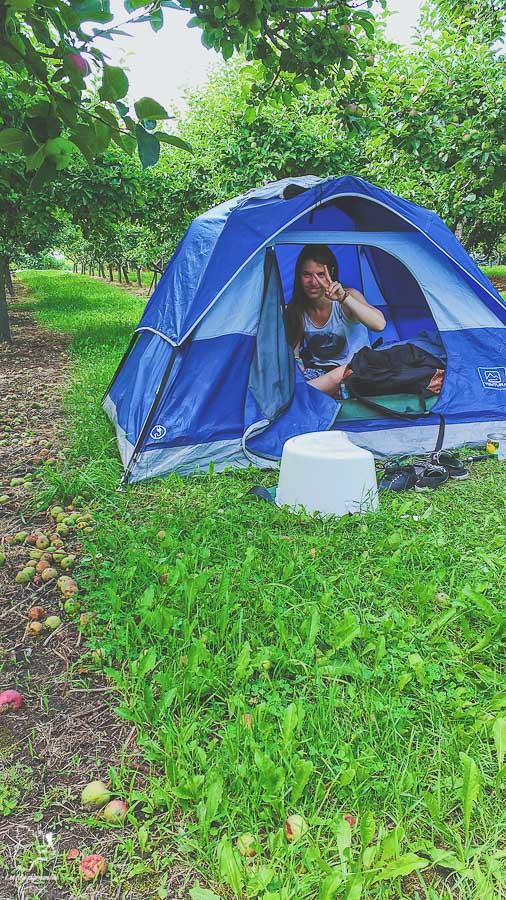 Cueillette de cerises dans la Vallée de l'Okanagan en Colombie-Britannique dans notre article Road trip vers l'ouest du Canada : mon itinéraire vers la Vallée de l'Okanagan #ouestcanada #ouestcanadien #roadtrip #canada #voyage