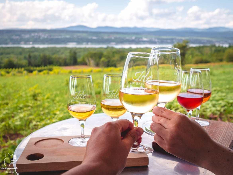 Dégustation au vignoble Isle de Bacchus à l'Île d'Orléans dans notre article Visiter l'Île d'Orléans au Québec : Incontournables d'une escapade gourmande lors d'un tour de l'Île d'Orléans #ileorleans #quebec #canada #voyage #escapadegourmande
