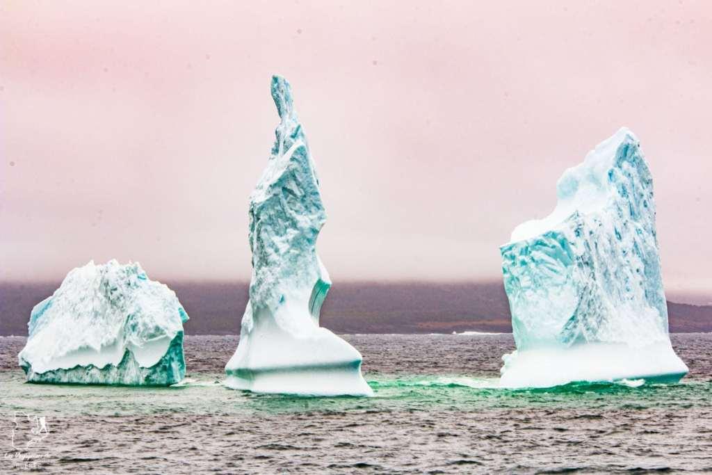 Icebergs à Terre-Neuve dans notre article Voyager en palette d'émotions : lorsque l'aventure devient introspection #emotions #voyage #voyager #introspection