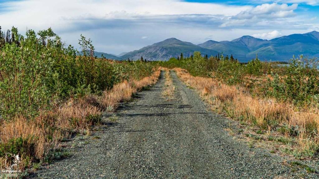 Sortir des sentiers battus lors d'un voyage au Yukon au Canada dans notre article Mon road trip au Yukon au Canada : 12 jours de liberté en truck camper au gré du vent #yukon #canada #roadtrip #voyage