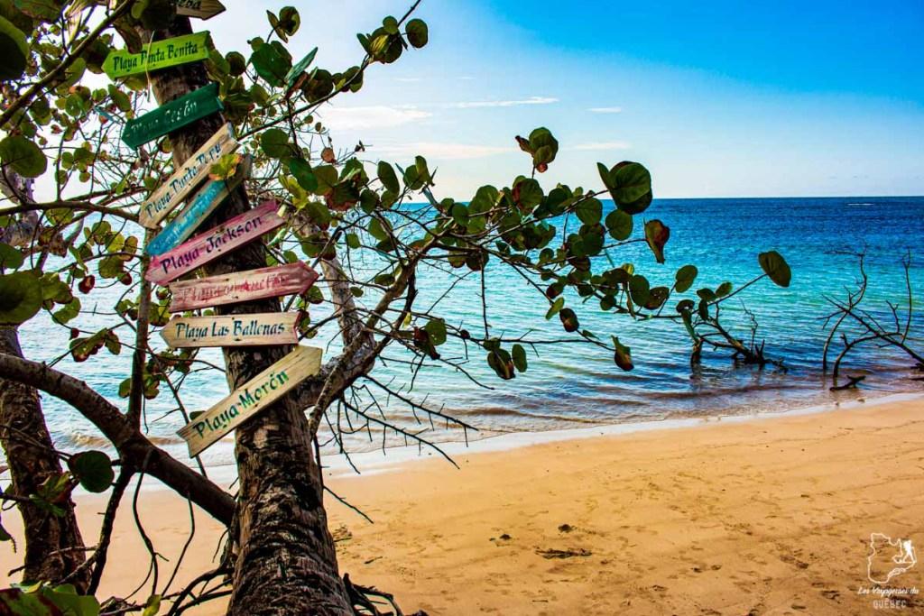 Plages de Las Terrenas en République Dominicaine dans notre article Voyager en République Dominicaine autrement : Las Terrenas, destination coup de coeur #republiquedominicaine #caraibes #antilles #amerique #voyage #voyagedanslesud #lasterrenas