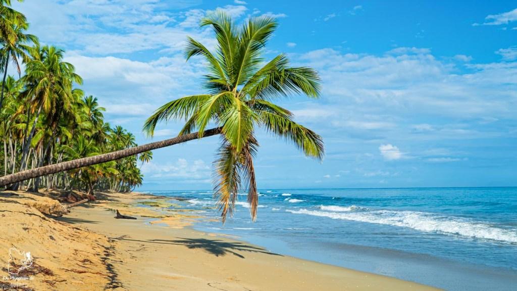 Playa Cosón à Las Terrenas en République Dominicaine dans notre article Voyager en République Dominicaine autrement : Las Terrenas, destination coup de coeur #republiquedominicaine #caraibes #antilles #amerique #voyage #voyagedanslesud #lasterrenas