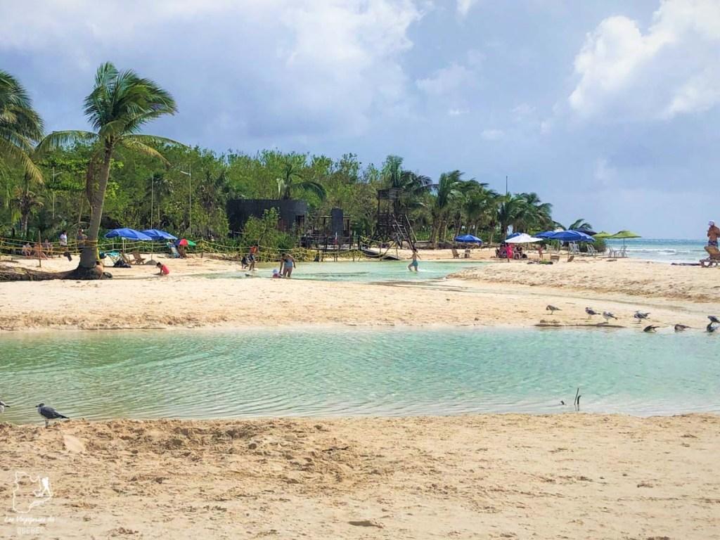 Cenote de Playa Punta Esmeralda au Mexique dans notre article Quoi faire à Playa del Carmen et dans le Quintana Roo au Mexique en indépendant #playadelcarmen #quintanaroo #mexique #voyage #caraibes #yucatan