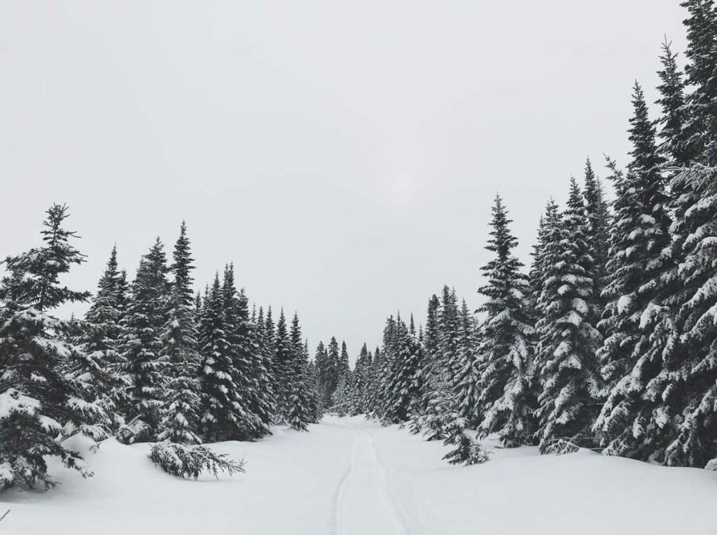 Faire du fatbike au Québec aux Monts-Valine dans notre article Fatbike au Québec : 8 endroits pour faire du fatbike au Québec en hiver #fatbike #velo #quebec #hiver