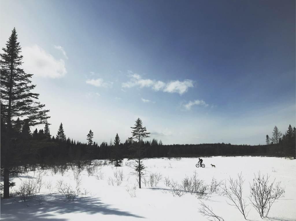 Faire du fatbike au Parc régional des Appalaches dans notre article Fatbike au Québec : 8 endroits pour faire du fatbike au Québec en hiver #fatbike #velo #quebec #hiver