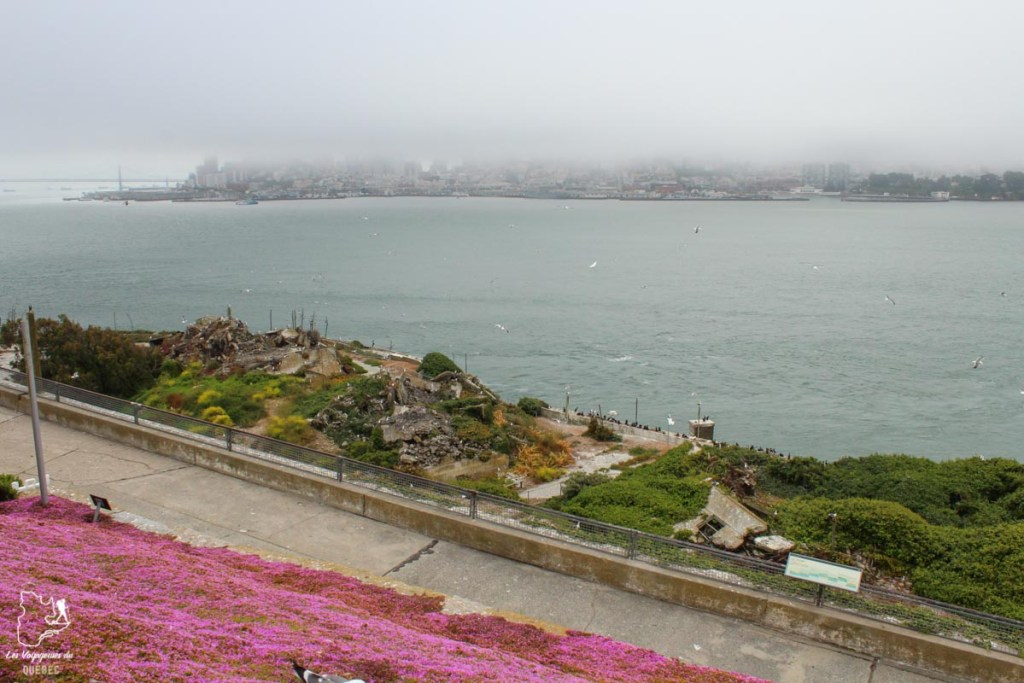 Vie sur l'île d'Alcatraz à San Francisco dans notre article Visiter Alcatraz : Tout savoir sur la visite de cette prison de San Francisco #alcatraz #ile #sanfrancisco #californie #usa #etatsunis #prison