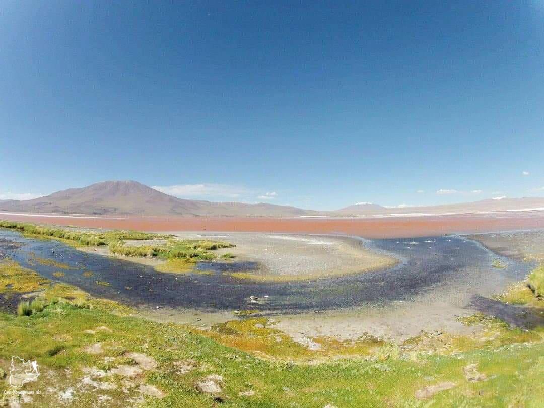Trek dans le Parc Callejón Cañapa en Bolivie dans notre article 5 témoignages sur le BLUES après un voyage de randonnée en montagnes #randonnee #blues #retourdevoyage #trek #voyage