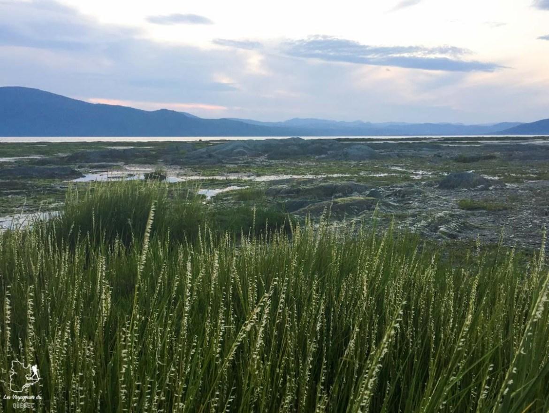 Le fleuve St-Laurent à Charlevoix dans notre article Visiter Charlevoix au Québec: Quoi faire dans Charlevoix entre fleuve et montagnes #charlevoix #quebec #voyage #canada
