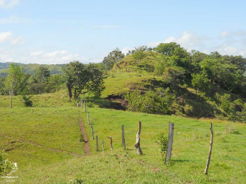 Randonnée équestre dans les montagnes de Caldera dans notre article Que faire au Panama : Mon voyage au Panama en 12 incontournables à visiter #panama #ameriquecentrale #voyage