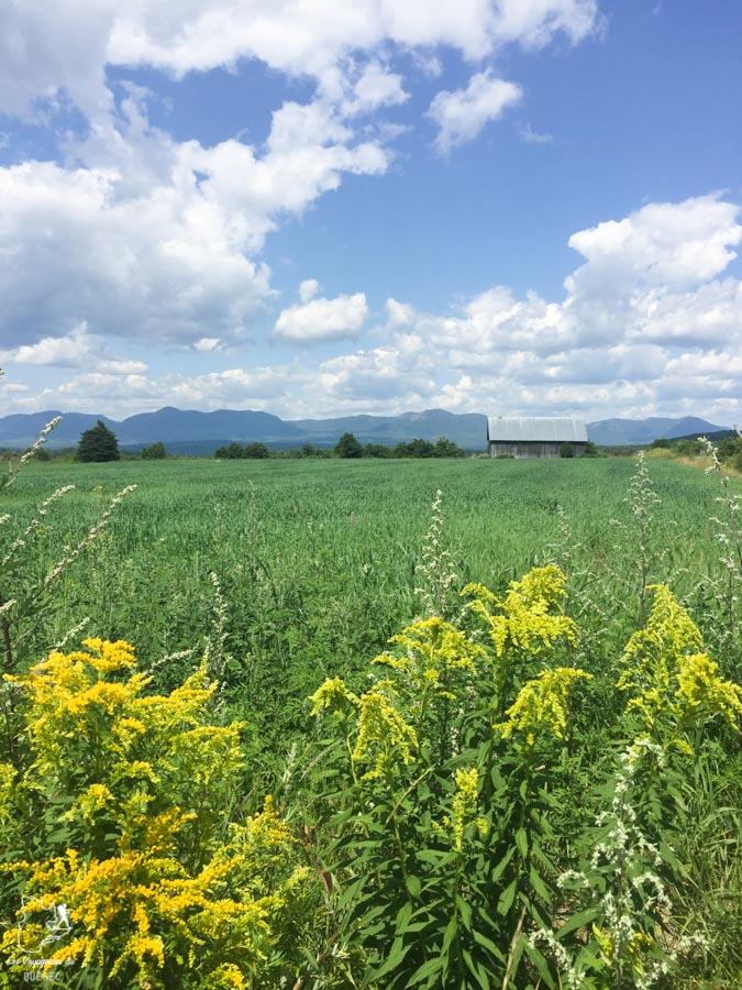 Paysage arrière-pays de Charlevoix dans notre article Visiter Charlevoix au Québec: Quoi faire dans Charlevoix entre fleuve et montagnes #charlevoix #quebec #voyage #canada