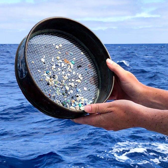 Échantillonnage de plastique dans les océans dans notre article Elle participe à Mission eXXpedition : projet écologique en mer totalement féminin #exxpedition #ecologie #environnement #voilier #femme #voyage