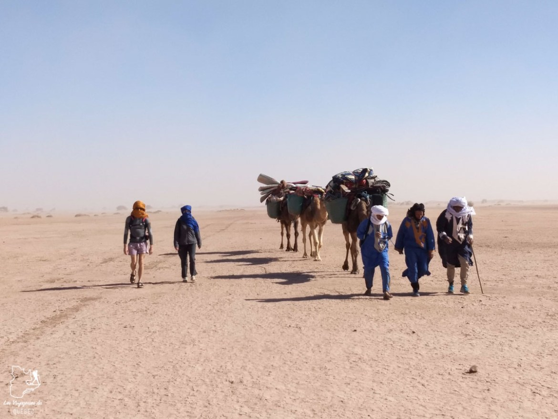 Trek à dromadaire dans le désert du Sahara au Maroc dans notre article Trek dans le désert du Maroc : Ma randonnée de 5 jours dans le désert du Sahara #desert #maroc #sahara #randonnee #trek #voyage