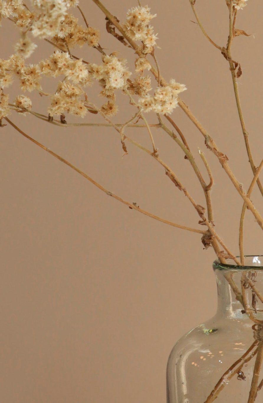 The most elegant flowers vase