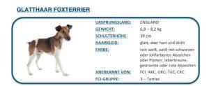 Hunde DNA Test3