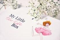 my_little_new_life_box_1